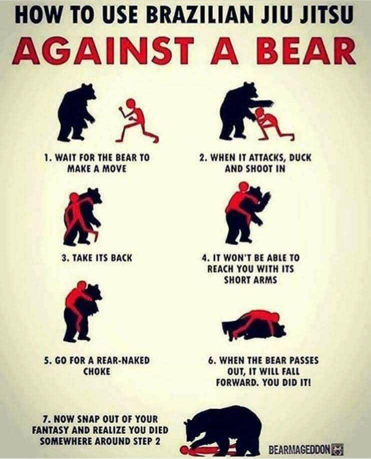 Stoner Meme- How to Fight a Bear