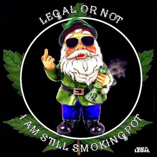 Stoner Meme- Legal or Not, Still Smoking Pot