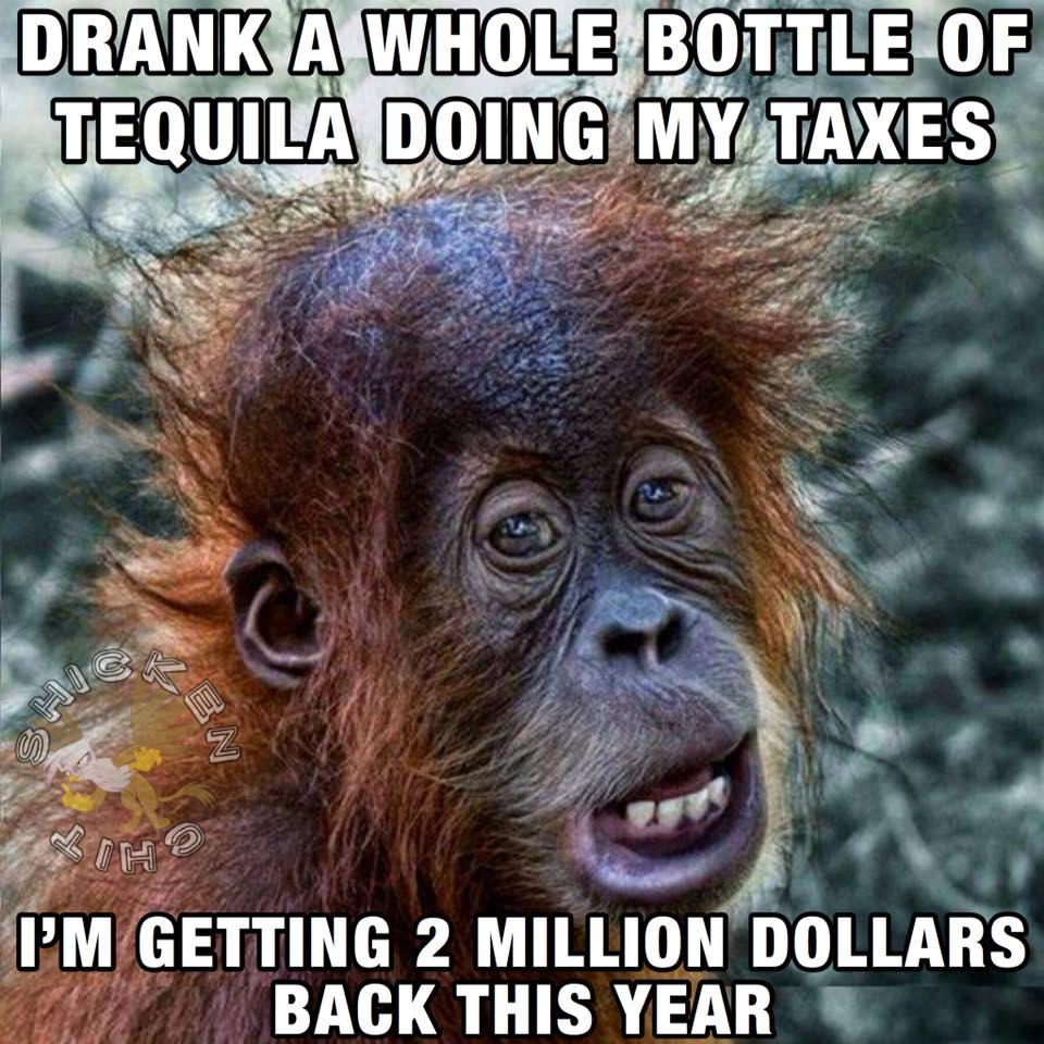 Just Did My Tax