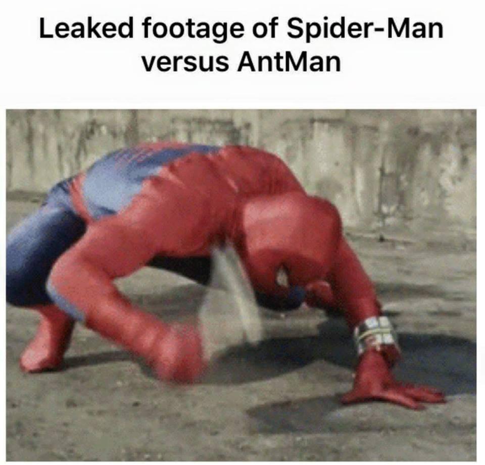 Spidey vs. AntMan- meme
