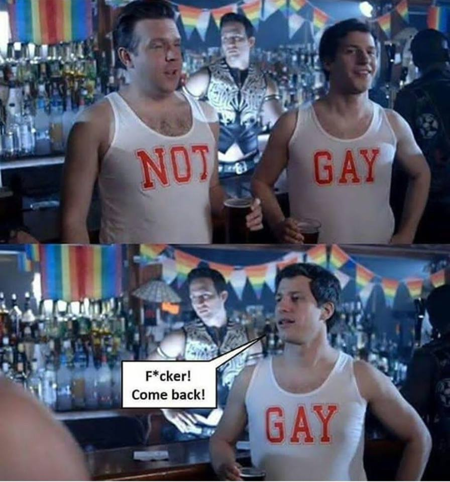 Not Gay - Meme
