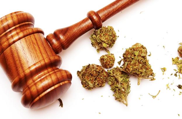 cannabis law - Drug Test with a Medical Marijuana Card