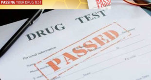 how-to-pass-drug-test