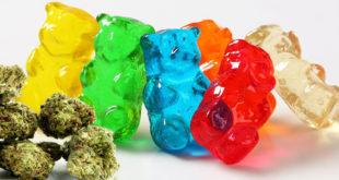 Edible Cannabis Gummy Bears - Edible Cannabis Gummy Bears: A Detailed Review