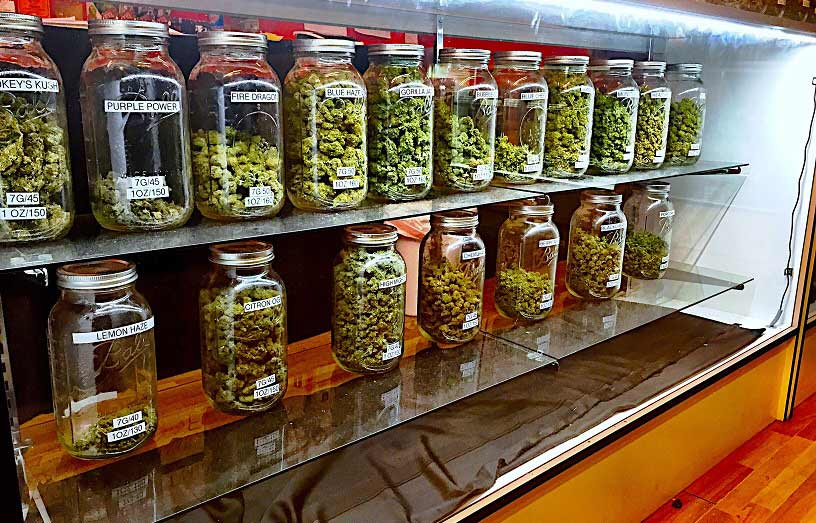 Research the market-7 Little Tricks To Achieve The Best Results In Buy Weed Online