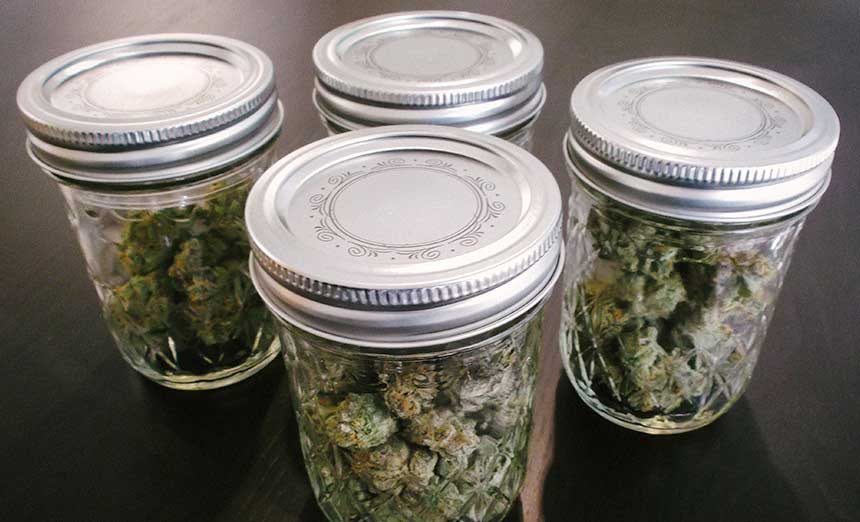 cannabis stored in jars - Ways to Store Your Cannabis