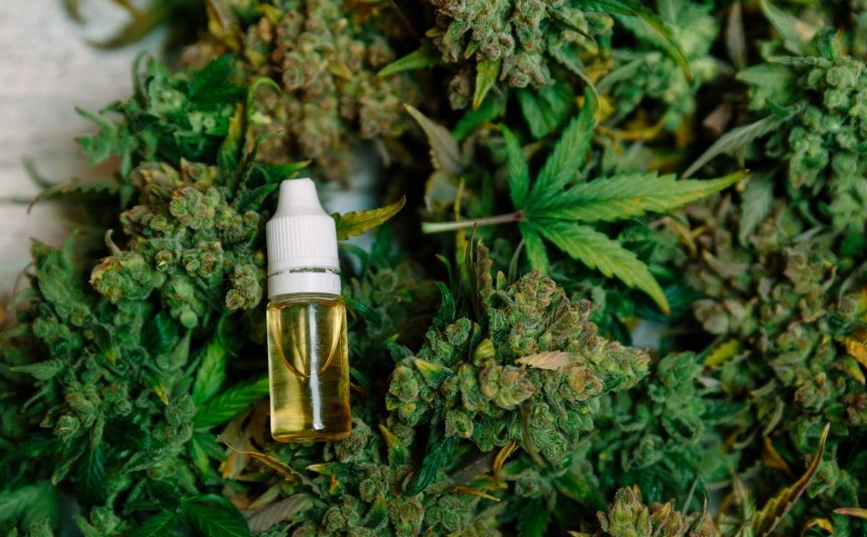 CBD Oil - cbd for neuropathic pain