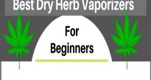 10 best dry herb vaporizers