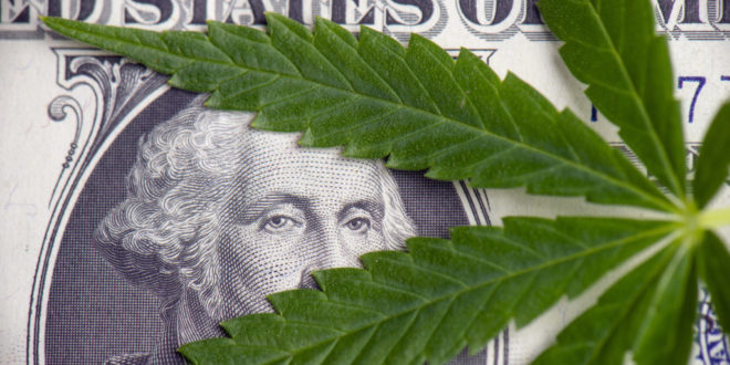 Dispensary Store Owners at Odds Over Bill Shutting Down Licensees